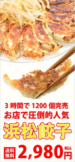 浜松餃子50個2980円送料無料セット